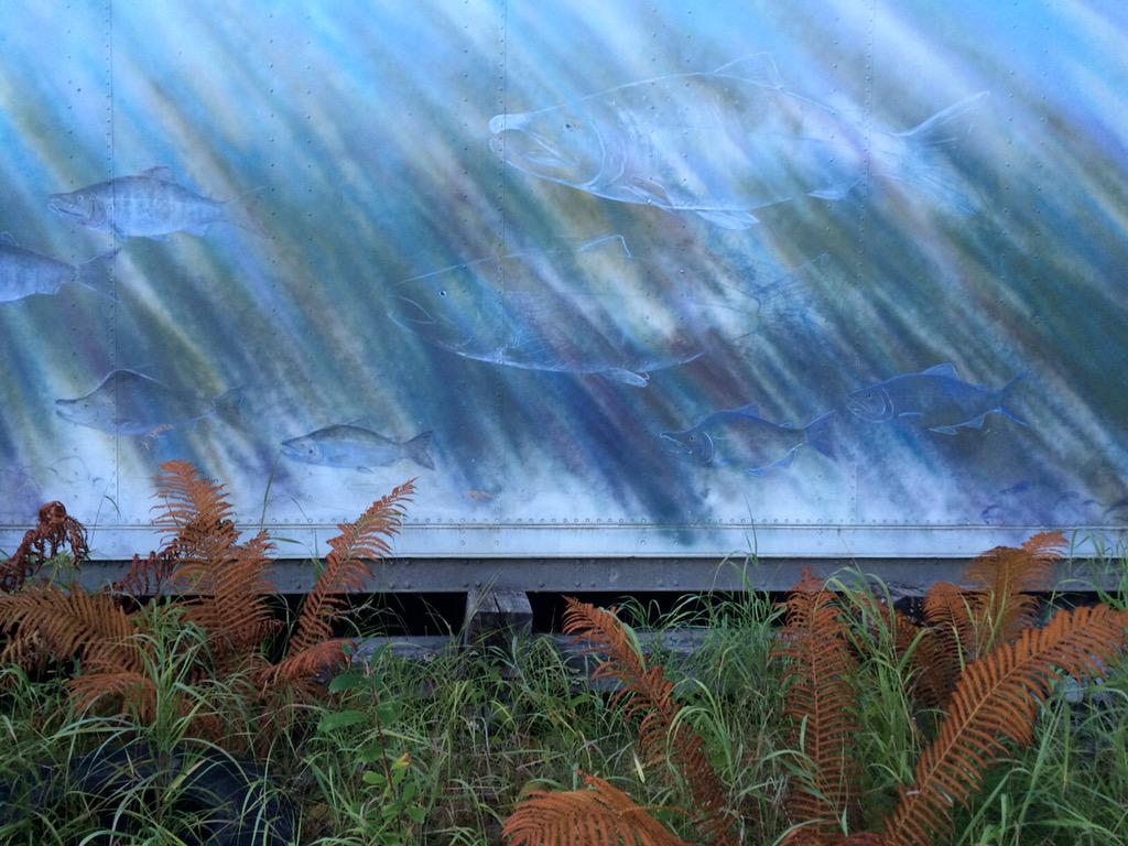 Salmon mural on cargo container, Talkeetna AK http://t.co/RxkaoJpH7H