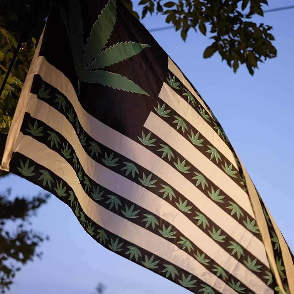 Retweet Set The Herb Free! #LegalMarijuanaNow http://t.co/DjYTVTRsIu