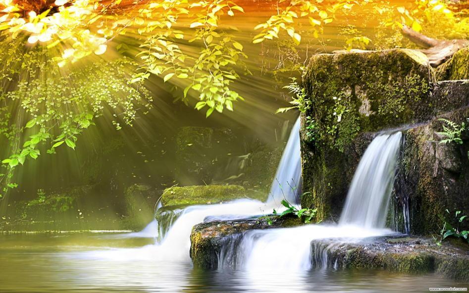 Flow, grow, glow beautiful souls  http://t.co/RROmi7Kwr3  http://t.co/utReTJ5ZKt via @gede_prama