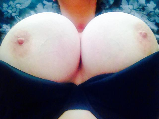 Countdown has begun:only 1more incall day 2get your hands/dick on these bazookas! 10am-2pm Fri http://t