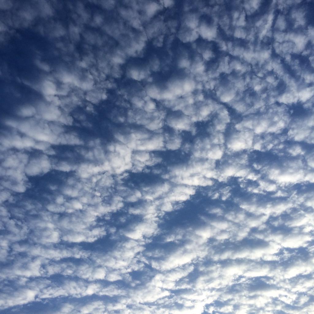 モコモコの空(゚o゚;;  秋ですね〜!  久しぶりの晴れ間(^o^)/  #イマソラ http://t.co/8f5V8JGts7