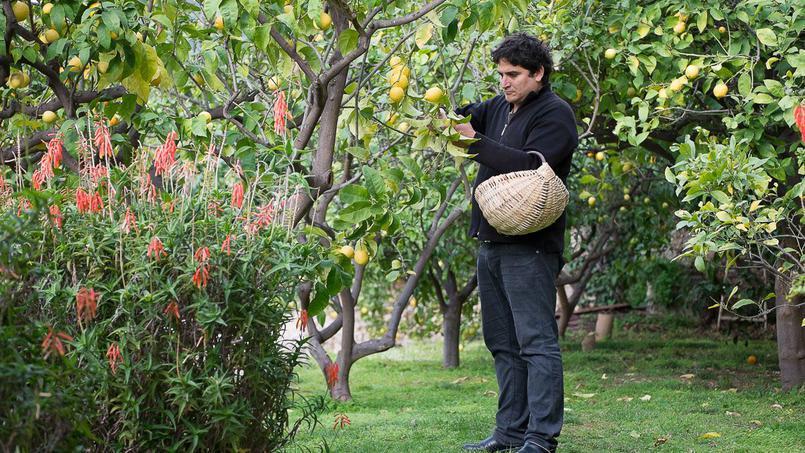 Ces grands chefs qui cultivent leurs propres légumes http://t.co/ZnuTSSCOnV http://t.co/z356YAVKbU