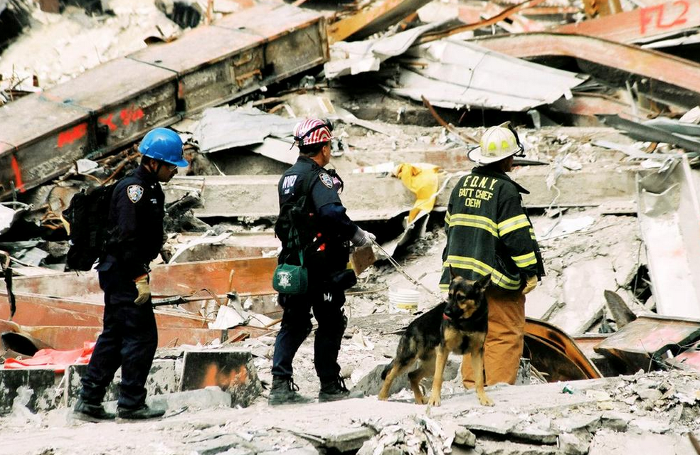Over 900 search and rescue dogs helped on 9/11 #NeverForget the bravery and their courage http://t.co/bTVBorcKhp