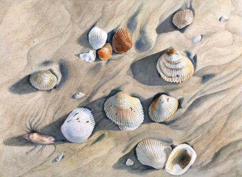Seashells 3, #watercolor by @Blue_Drift http://t.co/2gL7TzSgwg