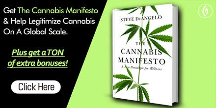 help legitimize #cannabis wit this book by @stevedeangelo @greenflwrmedia http://t.co/GmwbsfHPhY http://t.co/etU7mcT9I1
