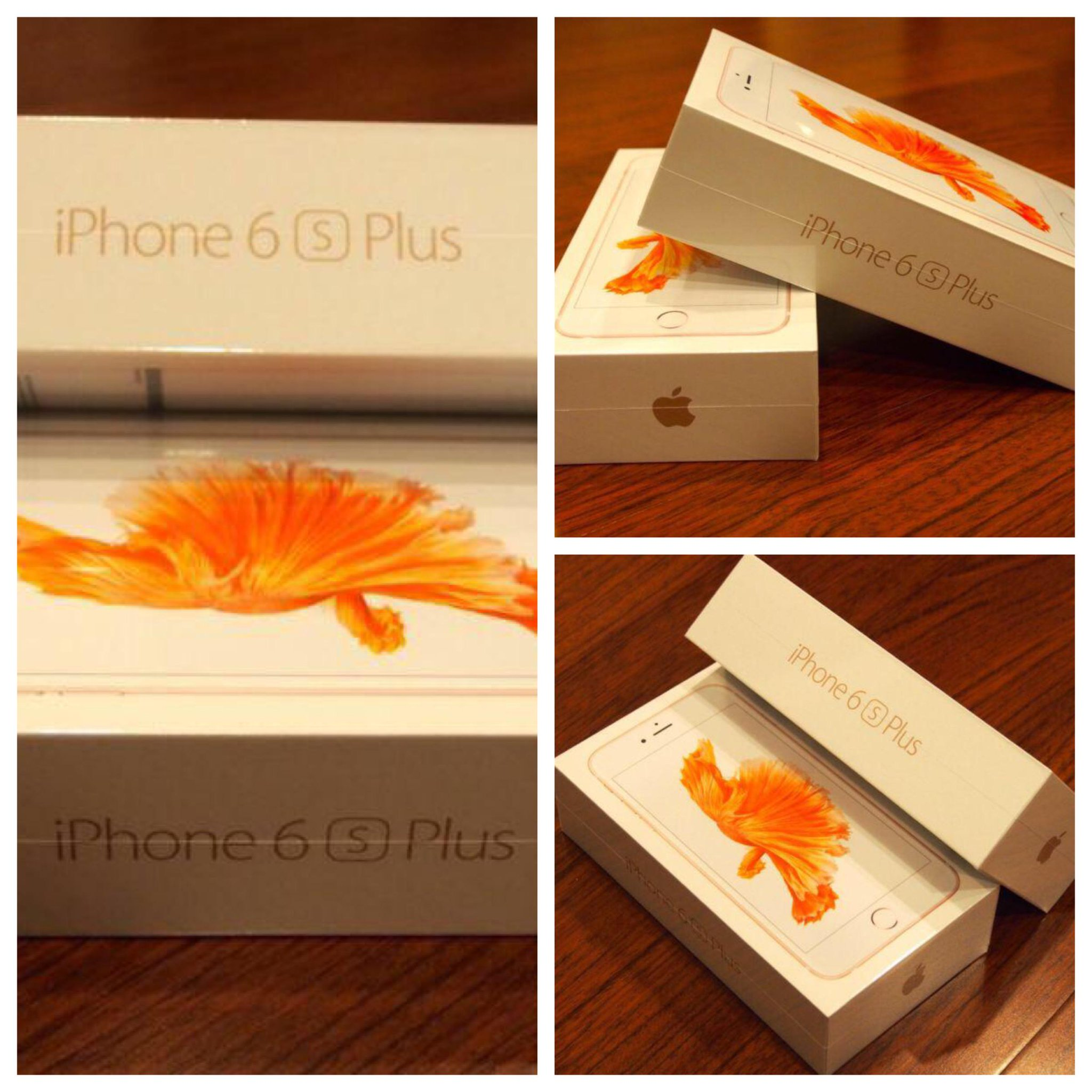 RT @flawlessfox: I'm giving away an iPhone 6S Plus. Retweet and follow to win…. #Apple #iPhone6sPlus #Honest http://t.co/IeQ1EWUFRG