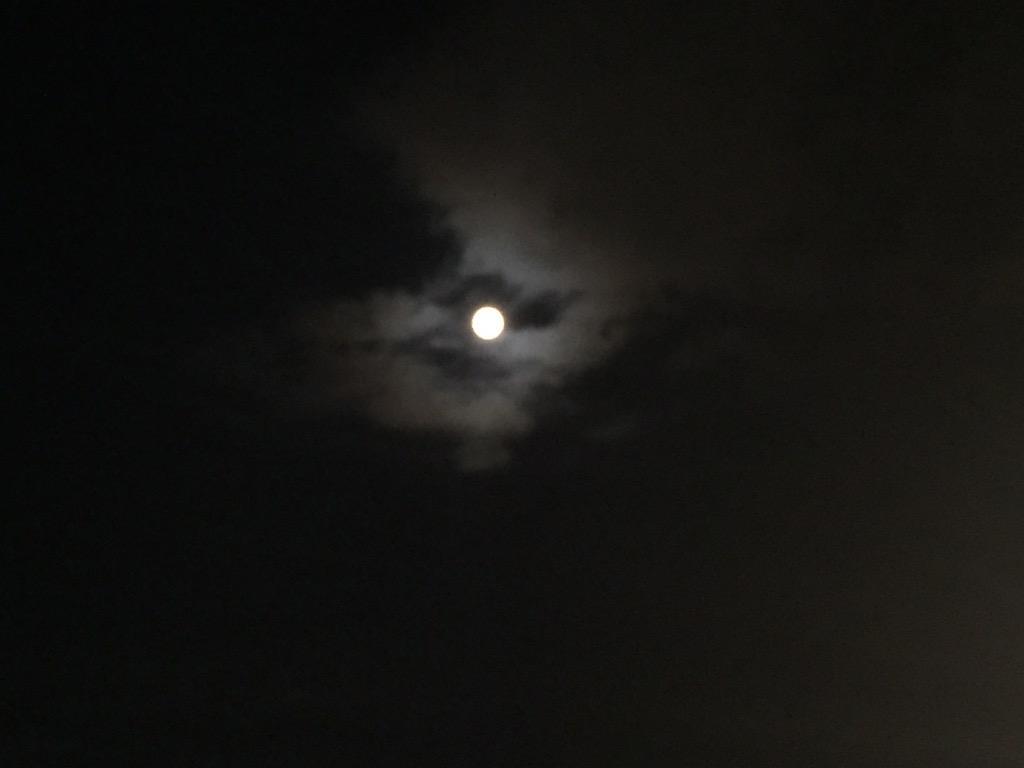 """ましまろ ほーぼーツアー2015@東京キネマ倶楽部2日目。いつものセトリに加え、マーシーのボーカルで""""Knockin' on Heaven's Door""""のカバーも!  鴬谷の月の下、素敵な夜になりました。 http://t.co/VZ3krIg7qa"""