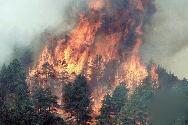 TERKINI  Kebakaran di Gunung Lokon tidak terkawal. API di Indonesia melebihi 1800. Angin bertiup ke arah Malaysia. http://t.co/3FLt5vMXYF