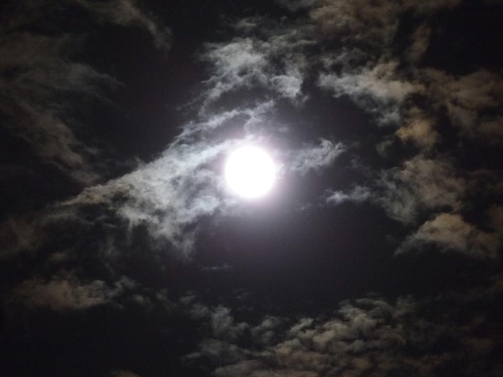 サスケストア (RT @sasukestore):月。 http://t.co/0gxUEtQ0rc (ここ→ http://t.co/AHbGSePwpw )
