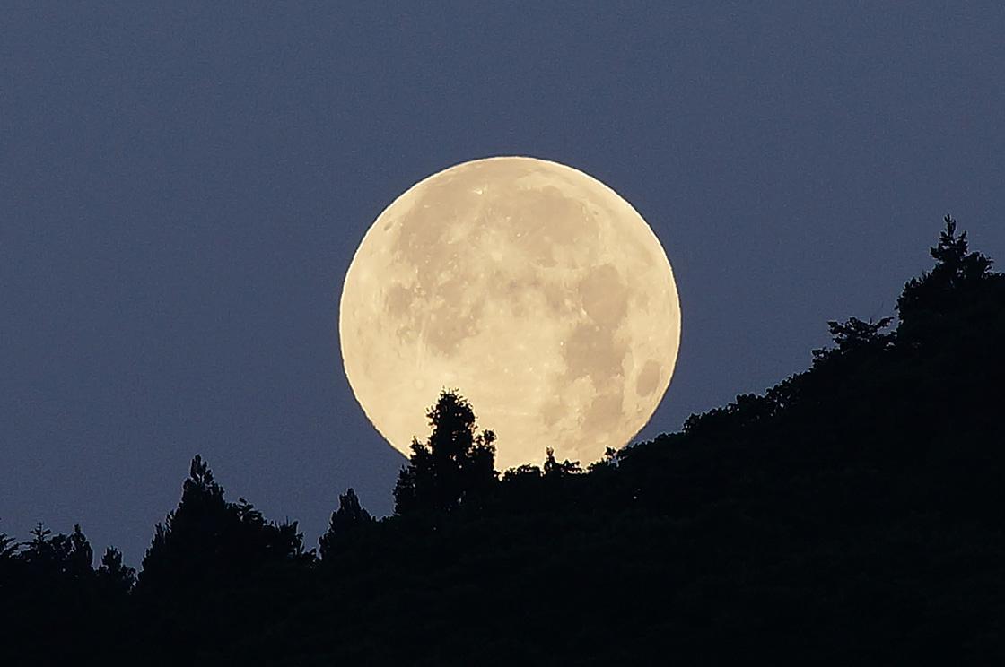 始め、月に叢雲の中秋の名月、心配していた雨も降らず、深夜になるとハッキリとした月が出、お月見日和だった。さしずめ「月に叢雲、花に風」と言ったところでしょう。そして、明けて28日は今年一番大きな月を見ることができるスーパームーンの日だ。 http://t.co/0R0jCHBeFe