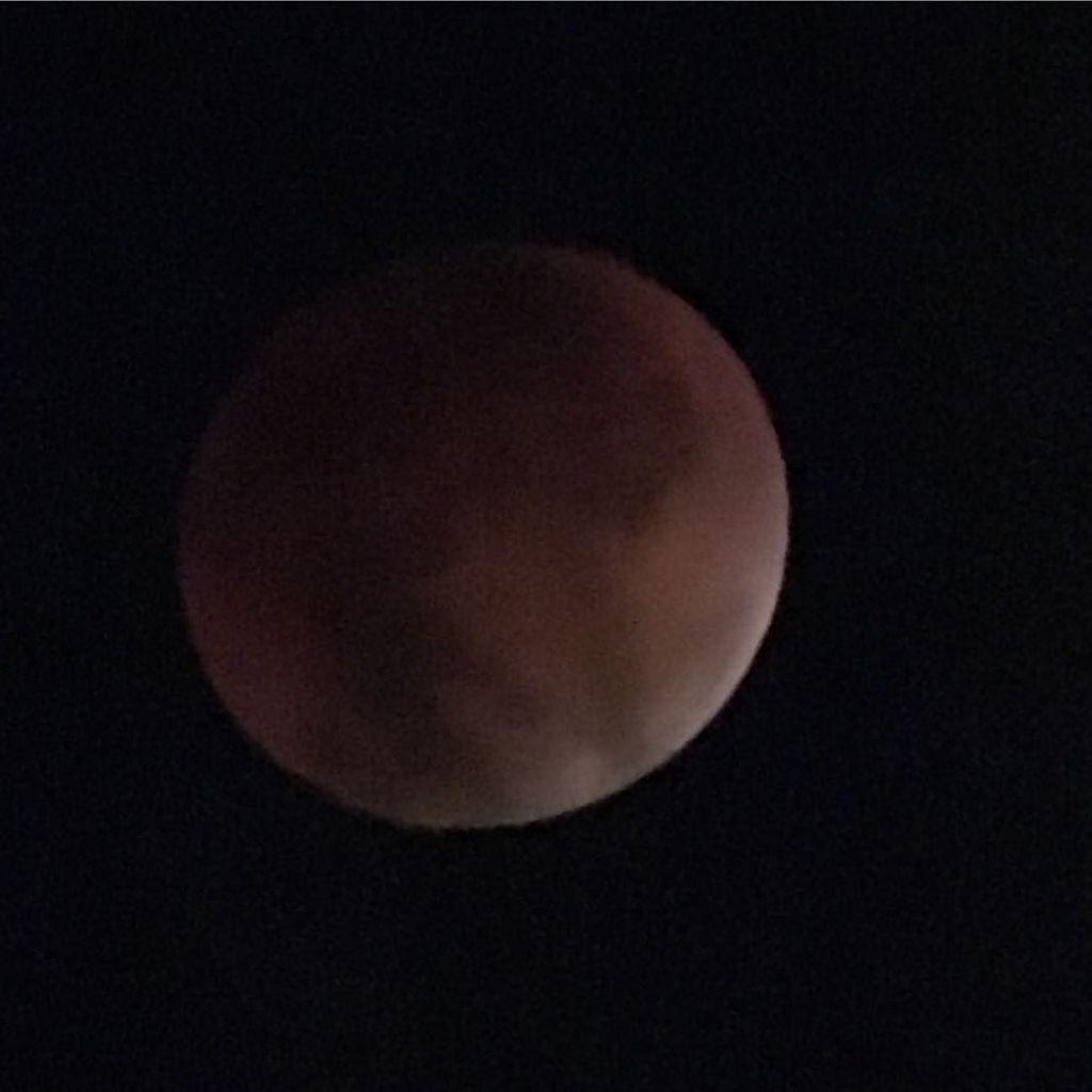Another lunar eclipse shot through a telescope with my iPhone 6s. #eclipse #moon #astronomy http://t.co/UEIClfD4sR