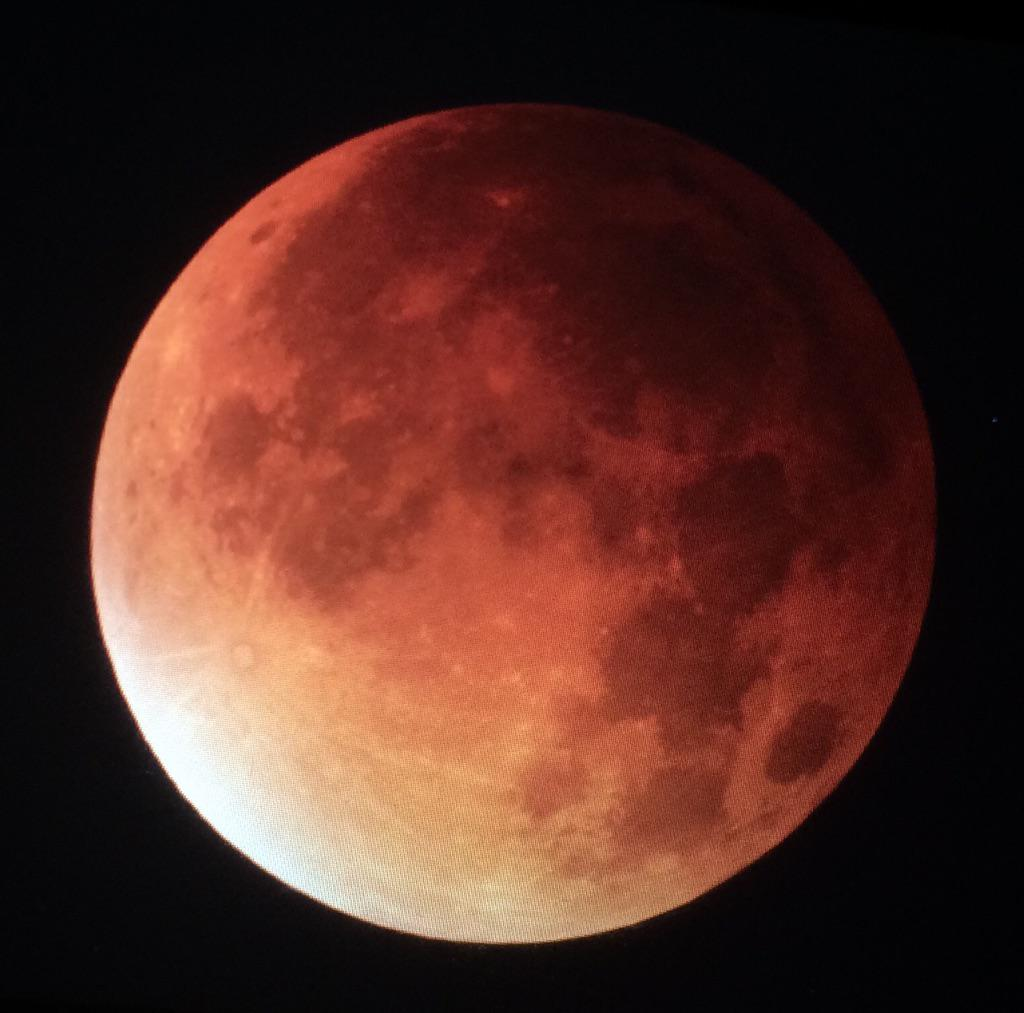 Completely stunning! #lunareclipse http://t.co/YNuNGB01IO
