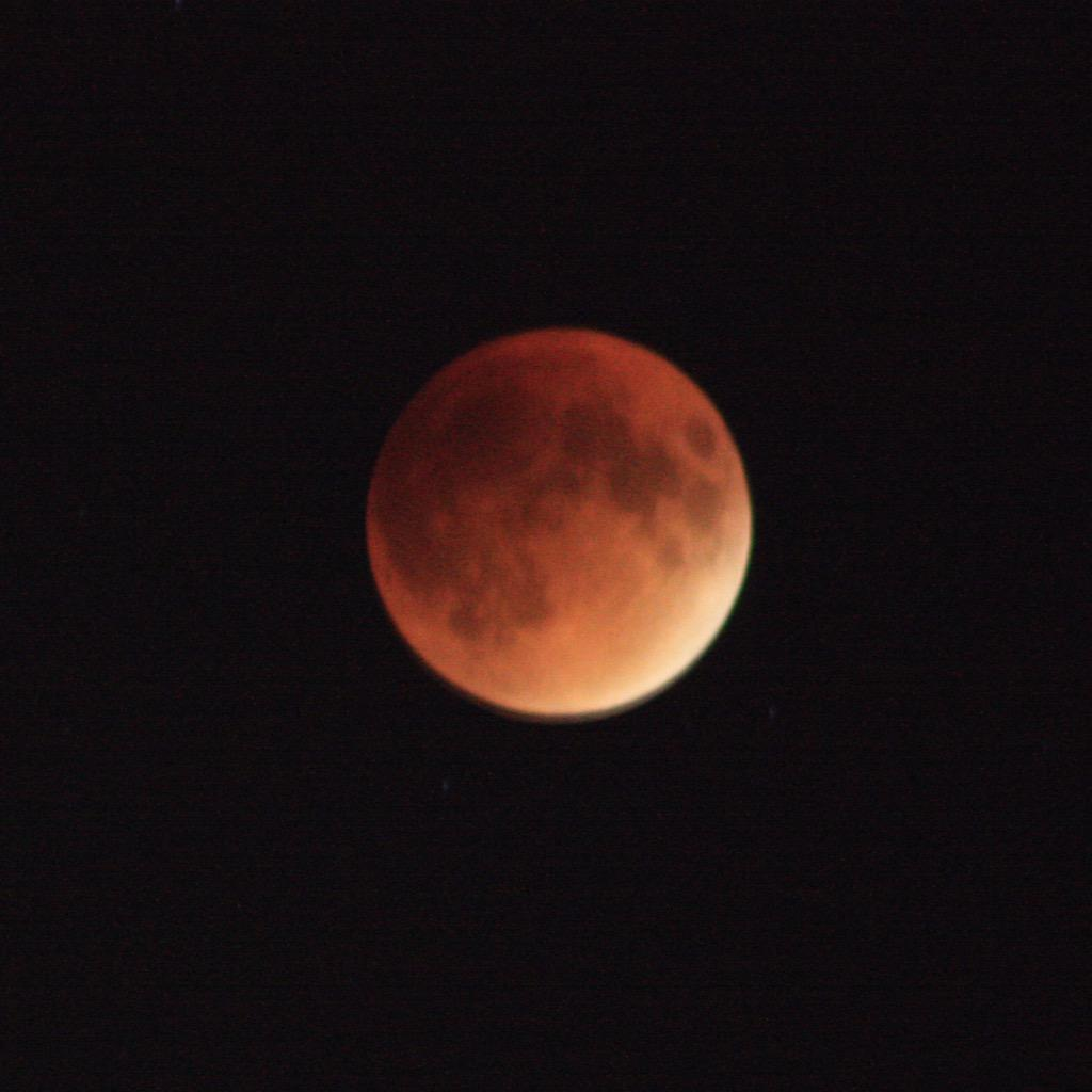 Red #SuperMoon: 10:31pm ET  #SuperBloodMoon from Williamsburg, Brooklyn http://t.co/nmYwNgrI0x