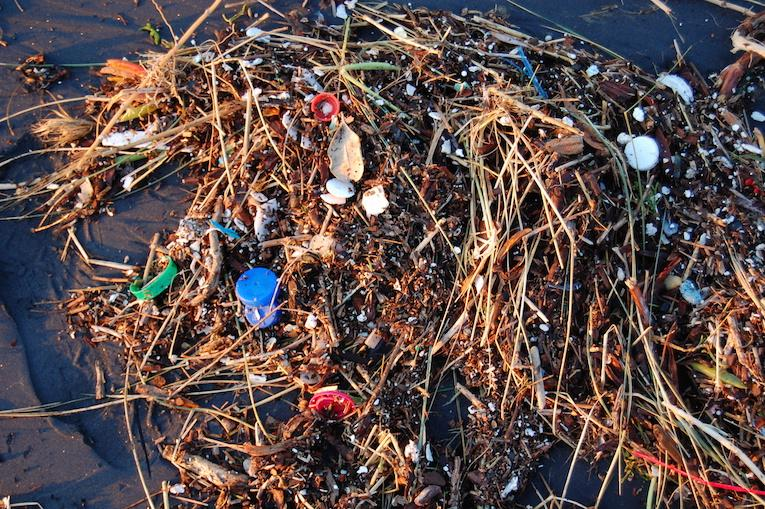 RT @Oceanwarrior: Why We Need to Wake Up & Do Something to Tackle #PlasticPollution in the Oceans http://t.co/l0t22tFNYS #MarineDebris http…