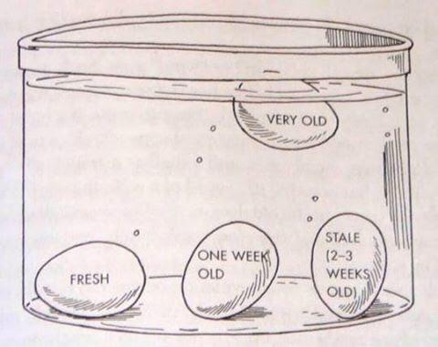 How to test the age of an egg. http://t.co/WYkLqRwMbg