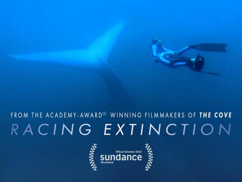 #RacingExtinction hits select theaters Sept. 18 Check out which cities here http://t.co/oKgcpqODOp @RacingXtinction http://t.co/xnEiEXDulD