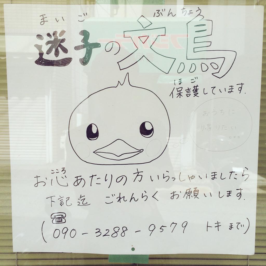 西宮市阪神電鉄香櫨園駅出口すぐのトキワ美容室さんが迷子の文鳥さんを保護してくださっているそうです。心あたりのある方に届くといいな。どうか届いて。 #文鳥 #迷子 http://t.co/kTkKMsOrLy