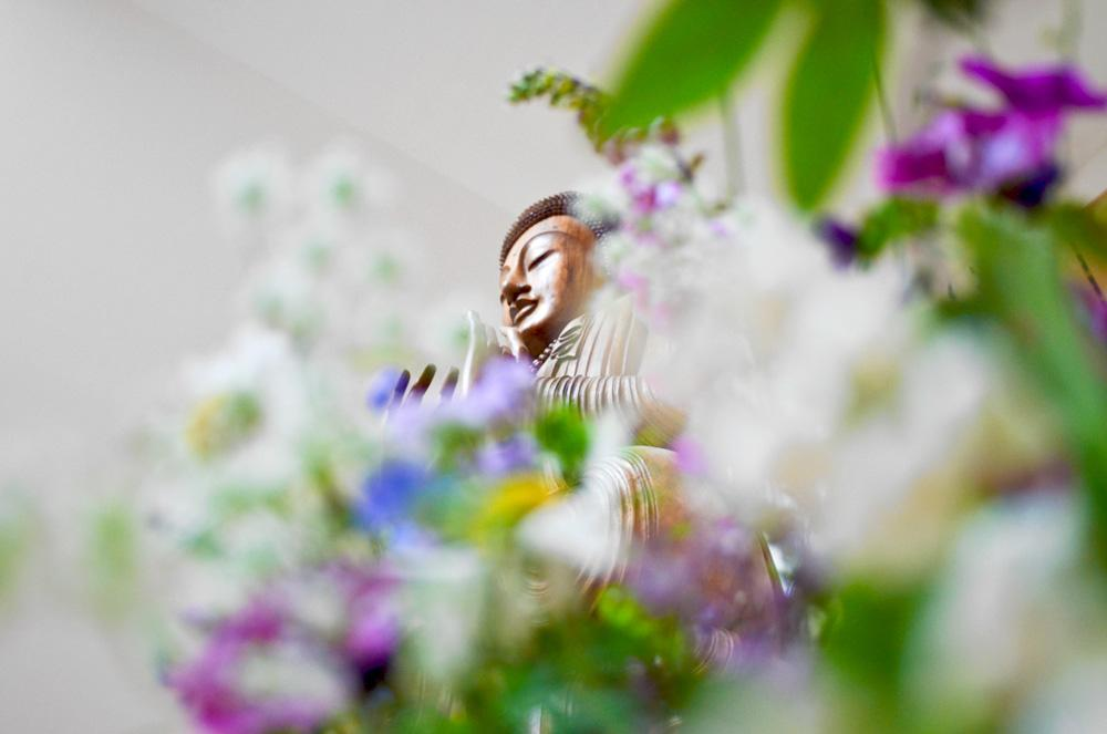 Read our essential guide to beginning (and beginning again) with Buddhism and meditation. http://t.co/3UAEZ8PbAd http://t.co/ALNannIPxo