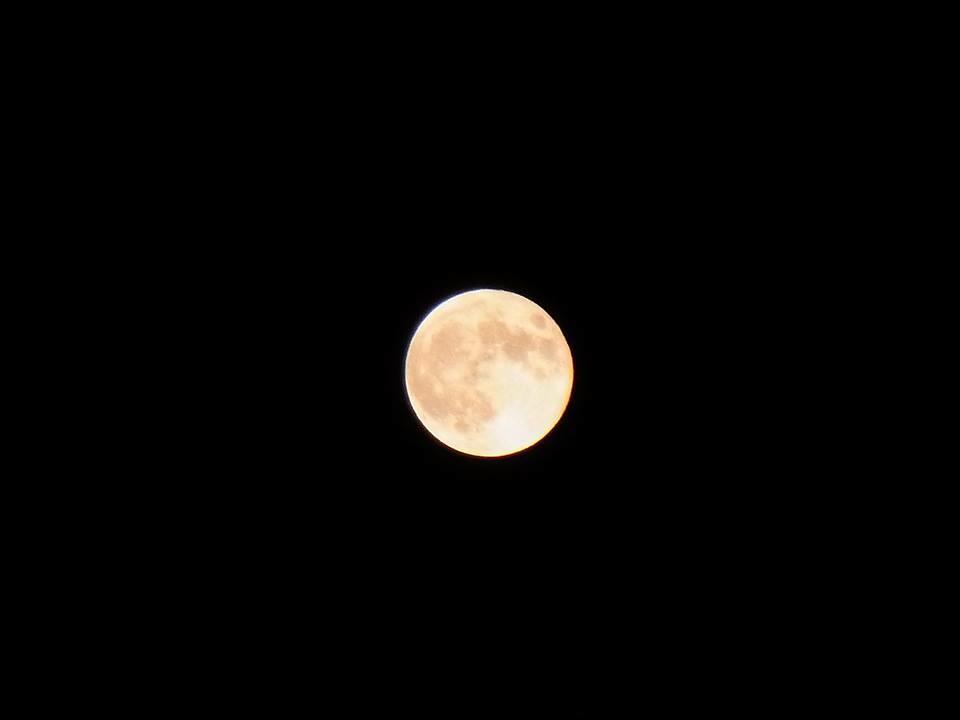 今宵のスーパームーン。 名古屋ではキレイな月が見えてます。 http://t.co/SRBENrTSOs