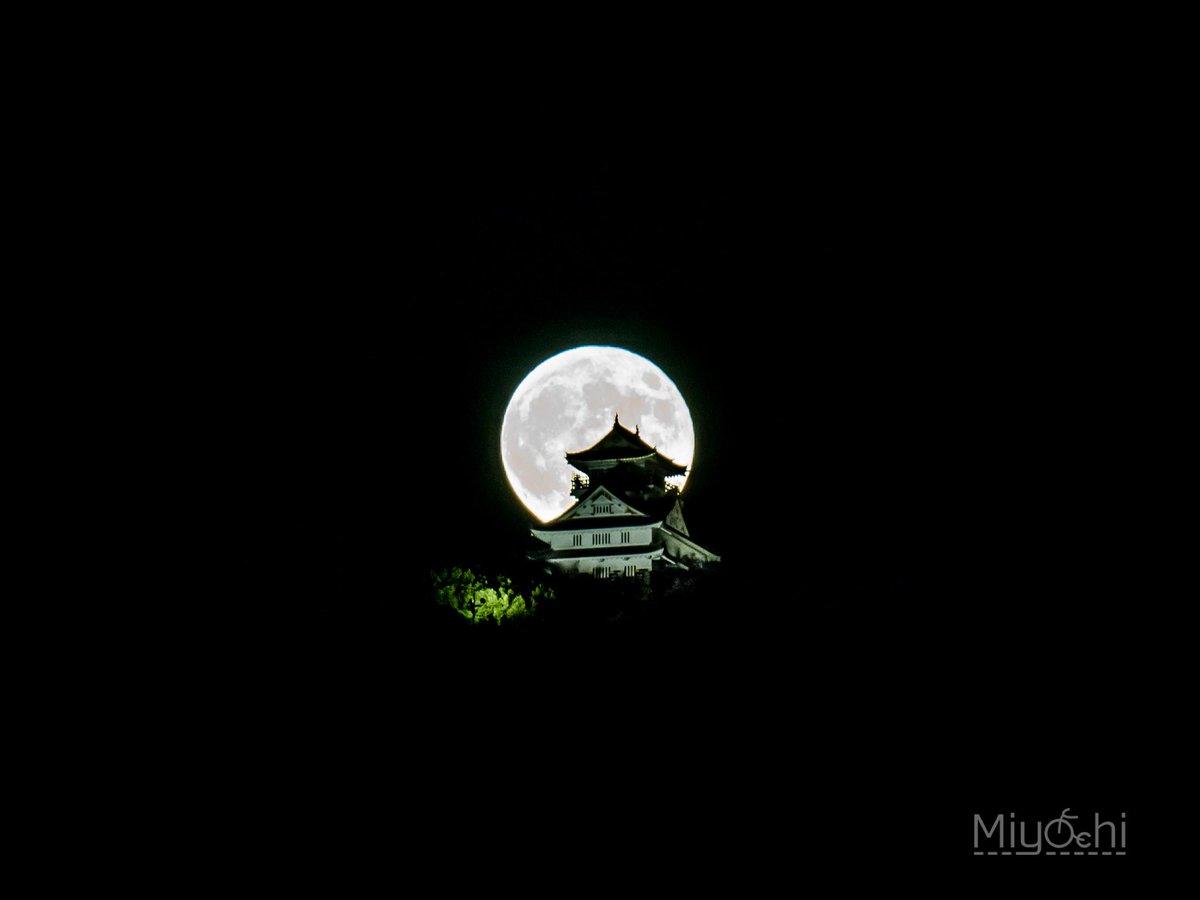 http://twitter.com/miyachi0730/status/648463343418671105/photo/1