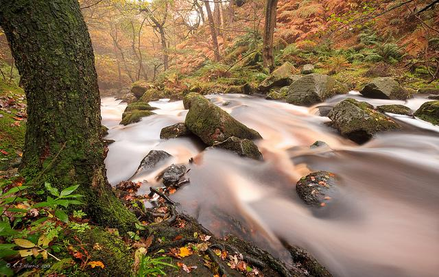 We love this #autumn view of Padley Gorge, #Derbyshire from the latest mag. Thanks @Bobby_Harris who took the pic! http://t.co/vgfkyvgsVX