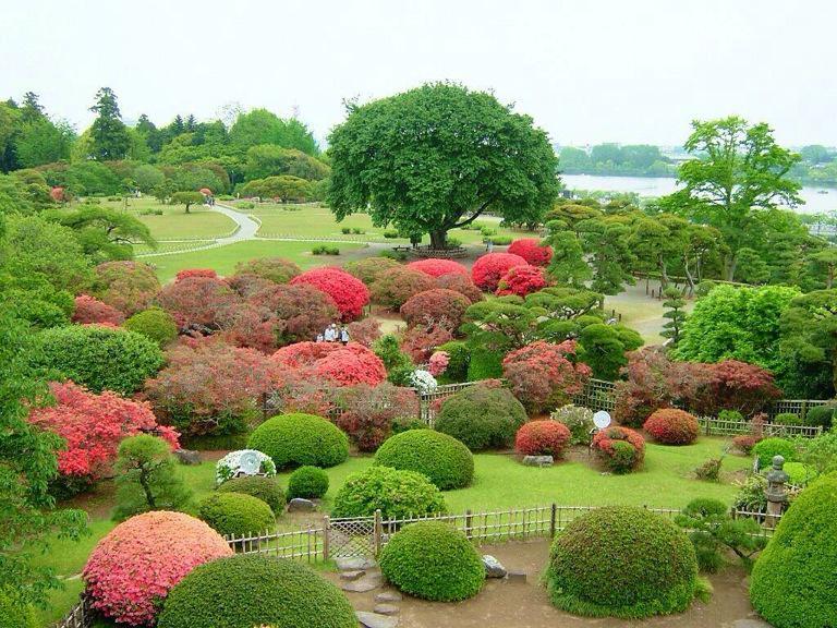 Feel Good Landscape https://t.co/B09L16p8EB c @ManyLepra #nature #travel #photography #art