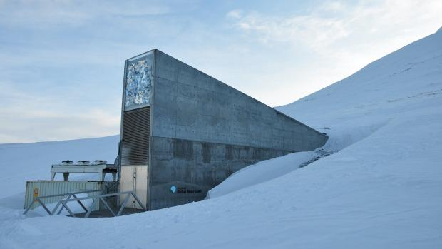 Syrian war spurs first withdrawal from 'doomsday' Arctic seed vault: http://t.co/1lqTGxGKRr http://t.co/SVcoR2NMDA