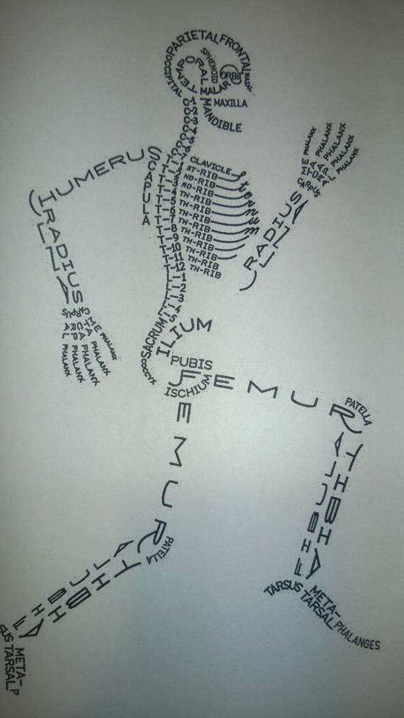 This may help @MagdaSzubanski @theprojecttv #namethatbone #theprojecttv http://t.co/8d9YDIxZIq