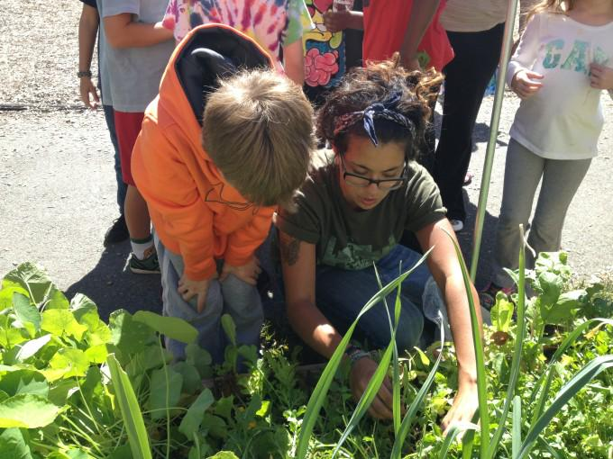 What happens when you teach #math in the #garden? http://t.co/Tf2edkCaO5 via @CivilEats http://t.co/oIuE97GsT2