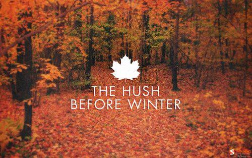 Happy Fall! #autumn #FirstDayOfFall http://t.co/w0pBVdQ6U8