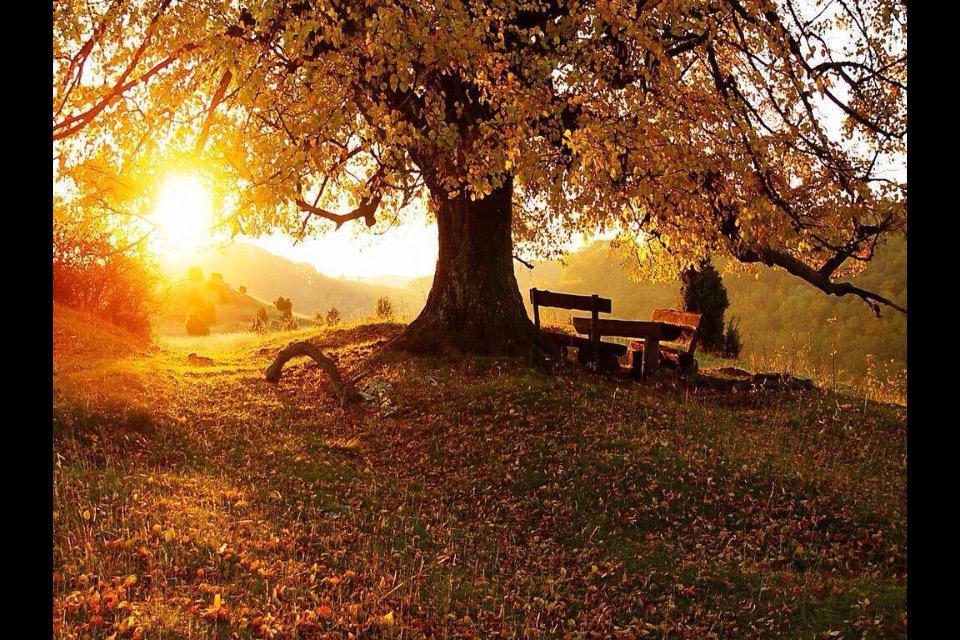 Hoy comienza el otoño; durará 89 días y 20 horas; terminará el 22 de diciembre. http://t.co/nly91TWTut