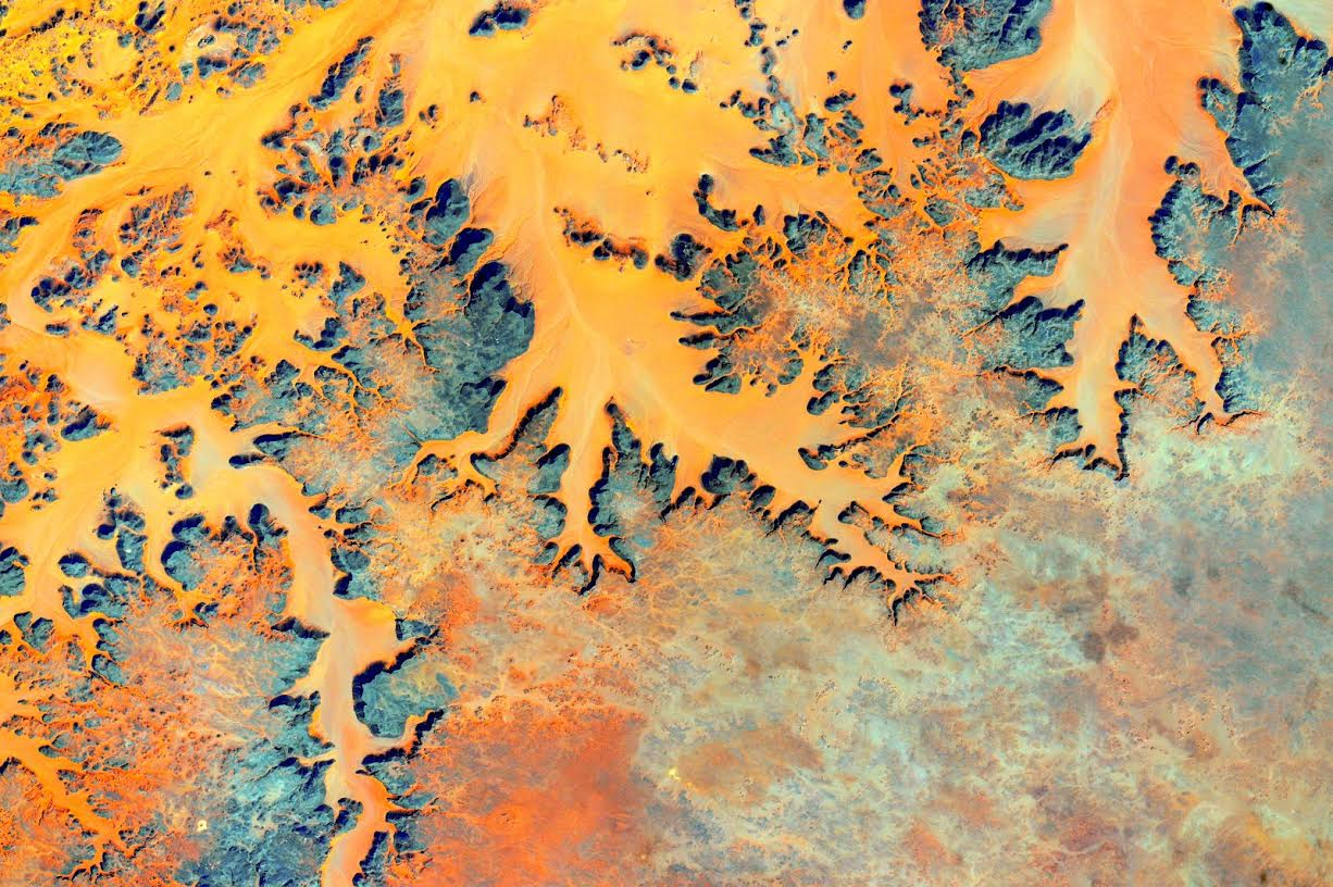 #EarthArt autumn leaves remind me of the good things that come with change. Happy #FirstDayofFall! #YearInSpace http://t.co/E95V7Xe6jM