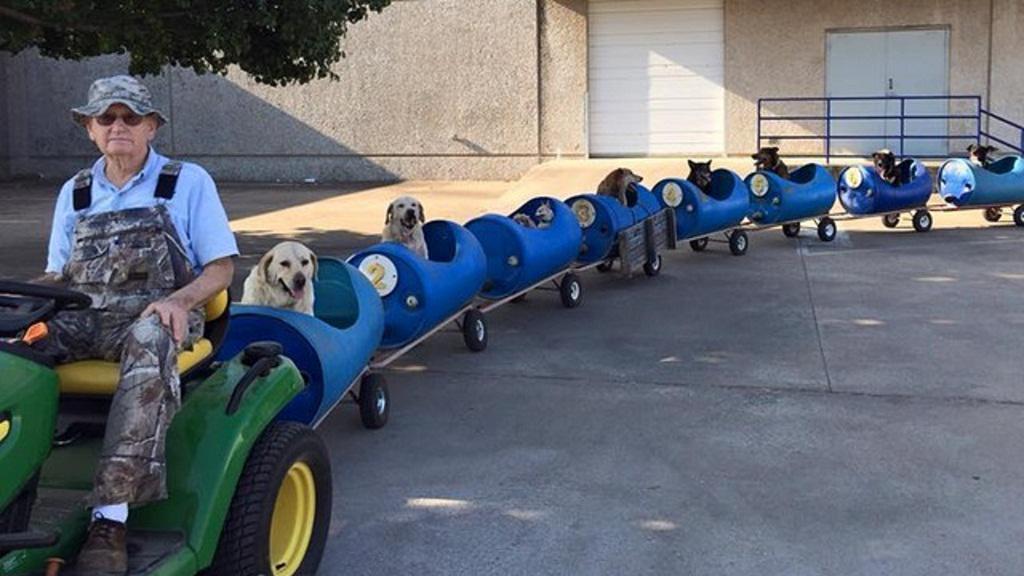 Granjero construye un tren para perros para pasear mascotas abandonadas http://t.co/SAuQzw6WCO http://t.co/wKQUXrWywO