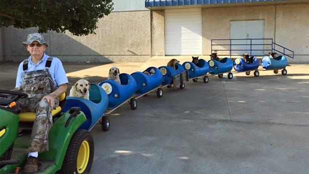 80-year-old man builds a 'dog train' to take homeless pets on adventures http://t.co/QPzSIwX8Kw http://t.co/Tnx70CUebM