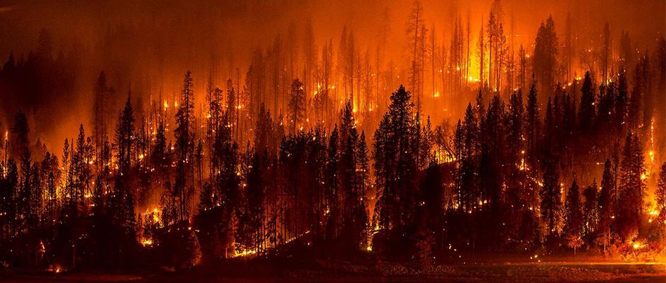 As #wildfires continue to burn in #CA, a forester explains the possible effects on #wildlife. http://t.co/OnbEaZLh4a http://t.co/KtsQEeWdaS