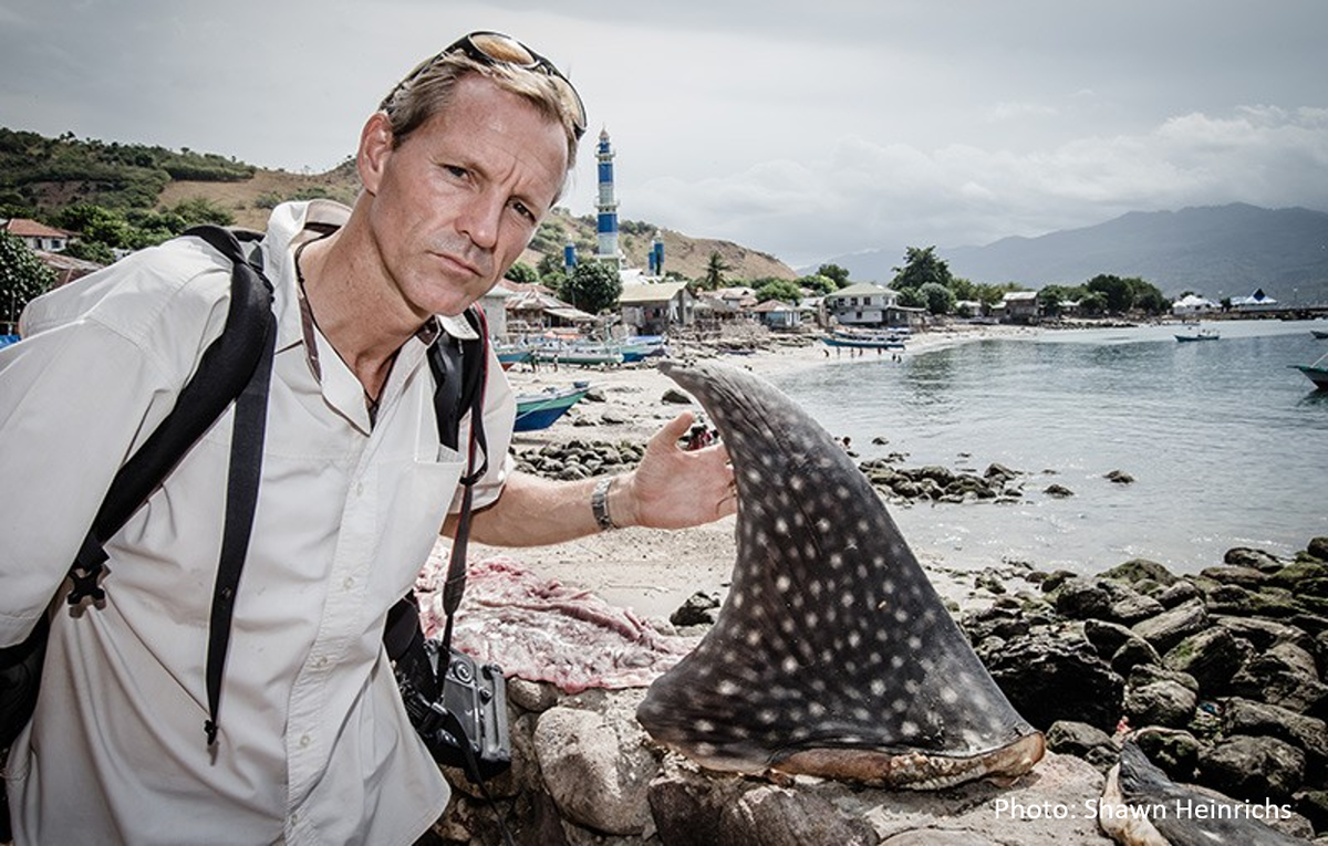 RT @RacingXtinction: Living on the brink: What happens if all the #sharks die? http://t.co/0sxZ2Vjgcm @greenpeaceusa @PAULJHILTON http://t.…