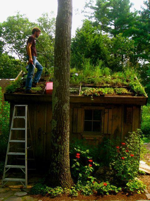 #Duurzaamheid is (h)eerlijk de ruimte delen met de #natuur... @BoswachterFrans @peter_joustra @Dajenne http://t.co/GjlD2oIMW4