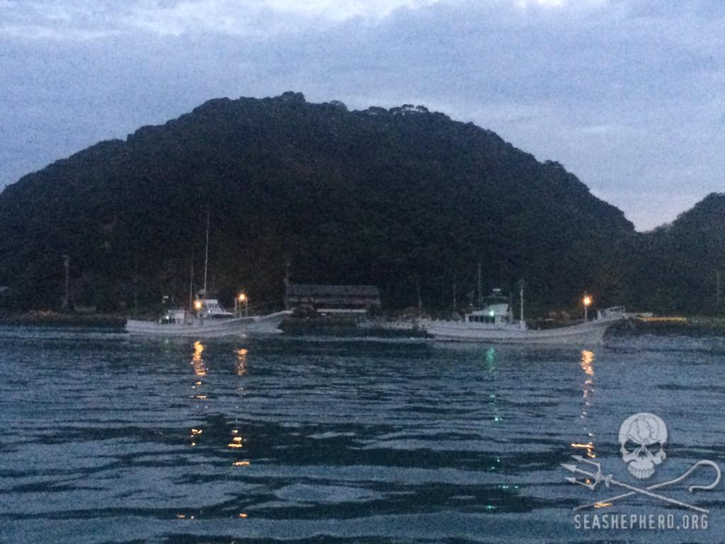 RT @CoveGuardians: After two straight days of no hunting 12 vessels have left the port, #twee4taiji #OpHenkaku http://t.co/6WcdtNAN0f