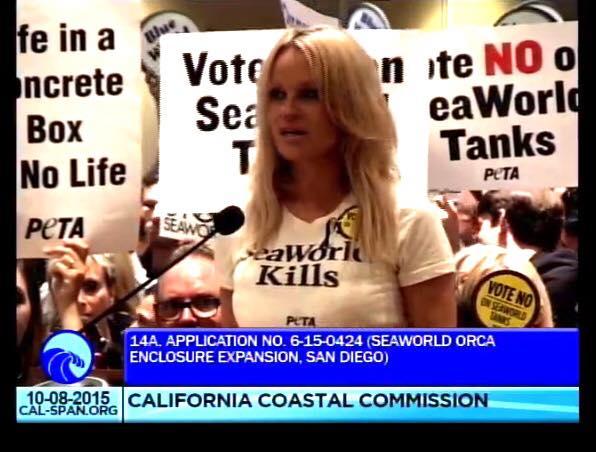 RT @seaworldisevil: Fighting for no expansion of @SeaWorld tanks - just FREEDOM FOR ALL CETACEAN SLAVES     @pamfoundation http://t.co/lVi3…