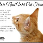Our cats and kittens are in need of wet food. Any donations would be much appreciated! #yqr http://t.co/VPLdGveODZ