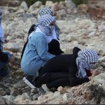 The Palestinian female participates in the Intifada to save #Alaqsa mosque as The Israeli settlers are attacking it. http://t.co/yEsrhvD1s6