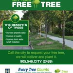 15,000+ trees have been planted with the Street Tree Program. Register for yours: http://t.co/M2okoVXYGi #HamOnt http://t.co/GHmyYg6DAf