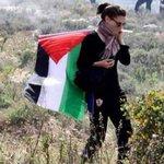 الإنتفاضة الفلسطينية تتحلي بشعار #الزمالك ❤️ http://t.co/sKkTEEGqKt