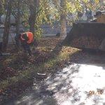 Очистка тротуаров и газона от мусора и листвы по Молодежному переулку @Rudakov_i_a @DepBlagSamara http://t.co/aZDSWWAjxH