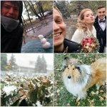 Ульяновцы лепят снеговиков и женятся в метель. Подборка фотографий снегопада из Instagram http://t.co/tm6EbS5Ote http://t.co/zgJxeKsTlD