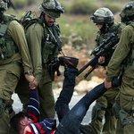 İsrail askerleri 8 günde 7 Filistinliyi öldürdühttp://t.co/KmWSrNp3eU http://t.co/8MJZ5KDbHq