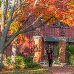Autumn at the Arch. Photo by Barbara Friedman http://t.co/bisnO2EQj2