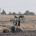 Picture of Palestinian youths raising the Palestinian flag at the eastern borders of #Gaza . #Palestine http://t.co/WY390tK2OJ