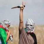 غزة العظيمة http://t.co/dag9W6Ffzu
