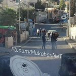 Pic from the clashes between #Palestinian teens & #Israeli occupation forces in Scopus Mount in #Jerusalem http://t.co/DA4pwuaseW